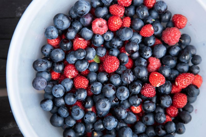 Mixed Bowl of Berries