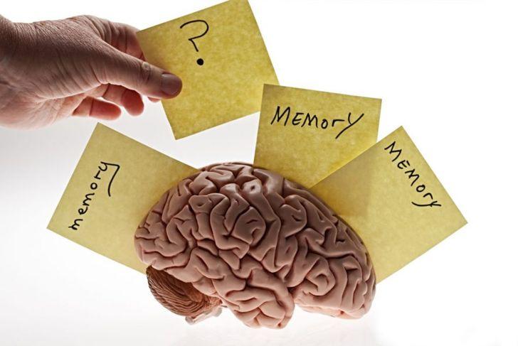 brain oxidation