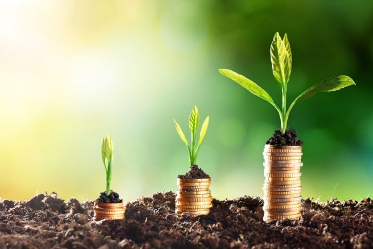 Compound interest financial