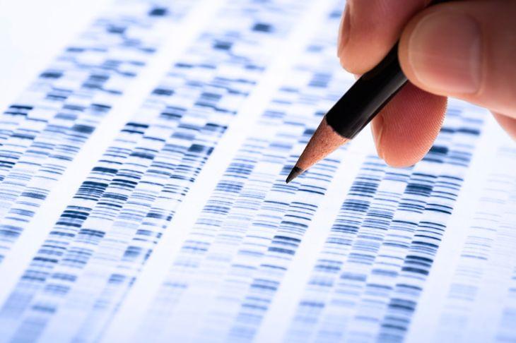 genetics incomplete dominance