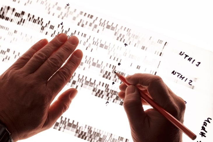 types of genes in humans
