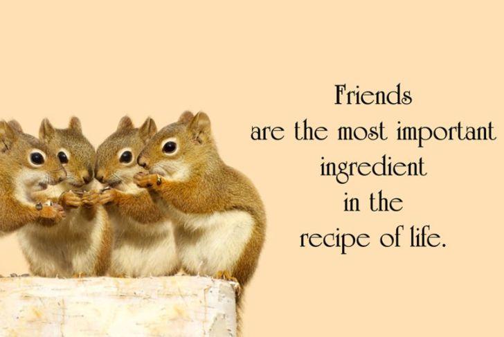 friends friendship