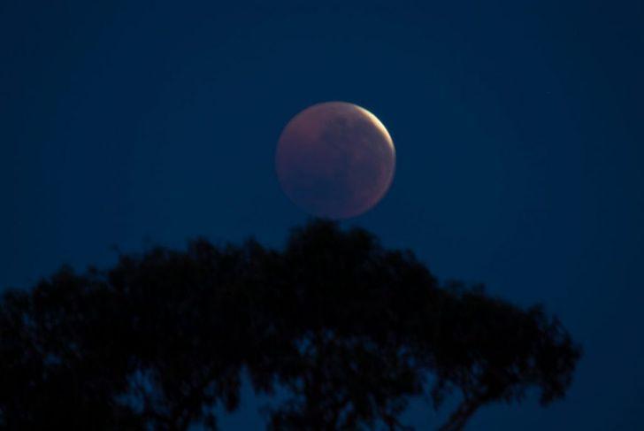 buck moon full moon