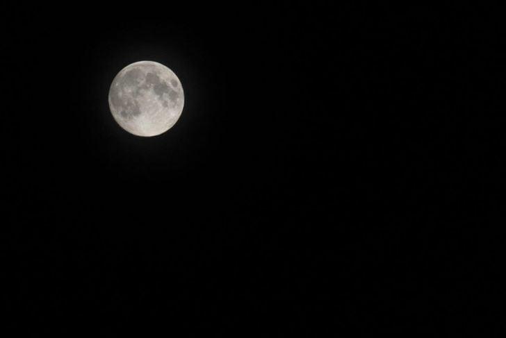 flower full moon