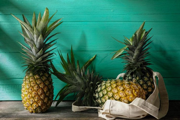 picking the right pineapple