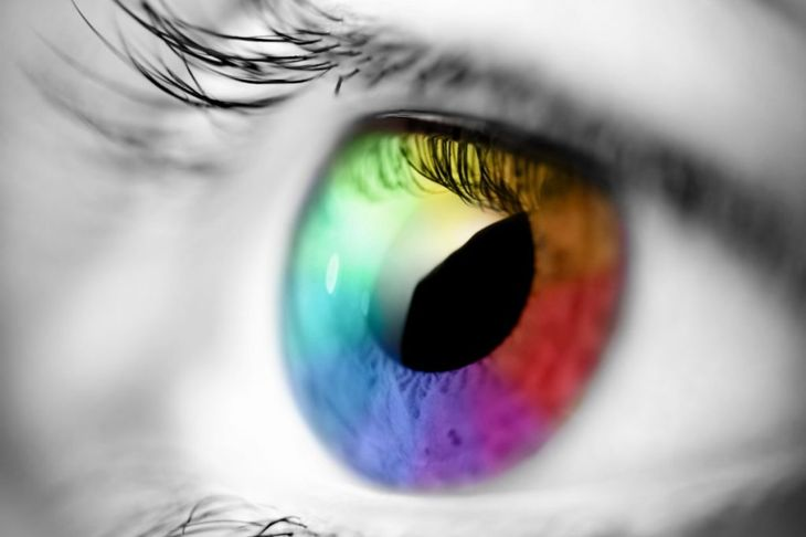 The eye interprets color for us