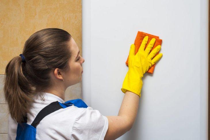 whitening appliance with sponge