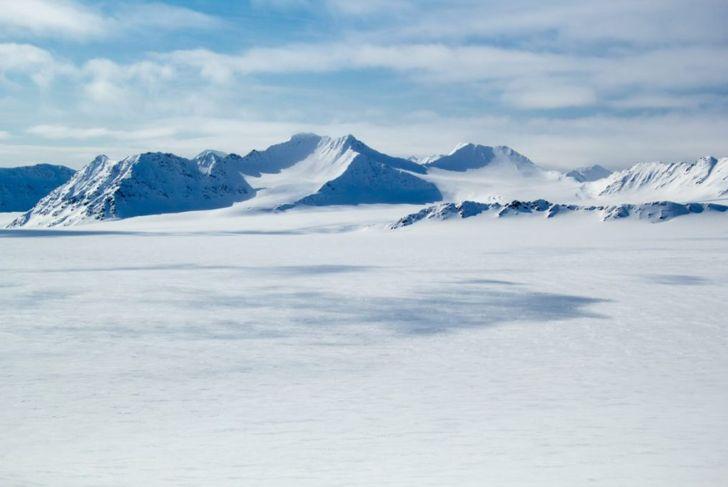 Arctic spring in Antarctica