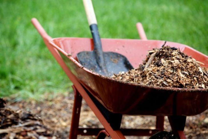 dry brown, eggshells, wood, carbon