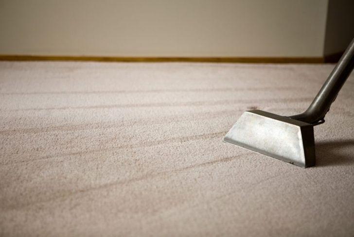 steam-clean vacuum carpets