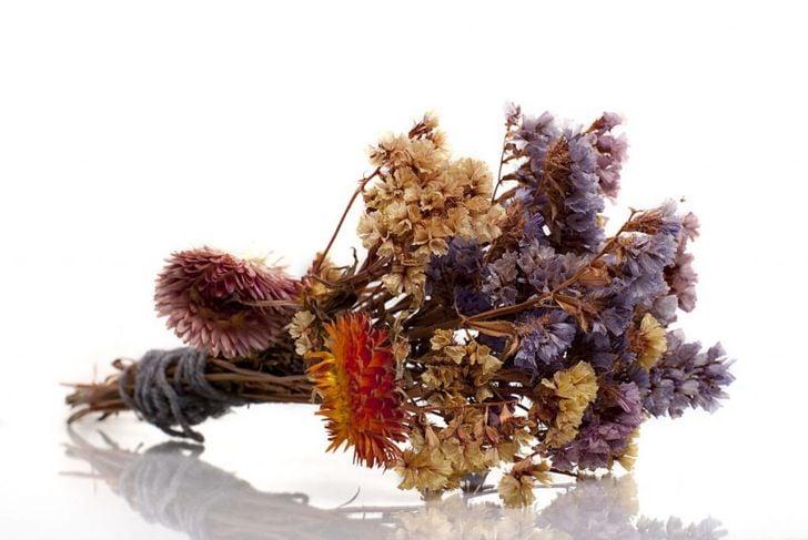 dried flowers preserve borax box