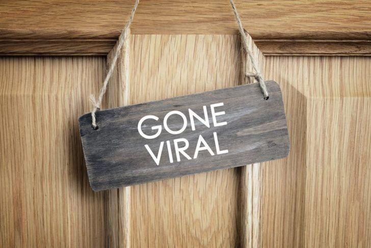memes viral marketing business