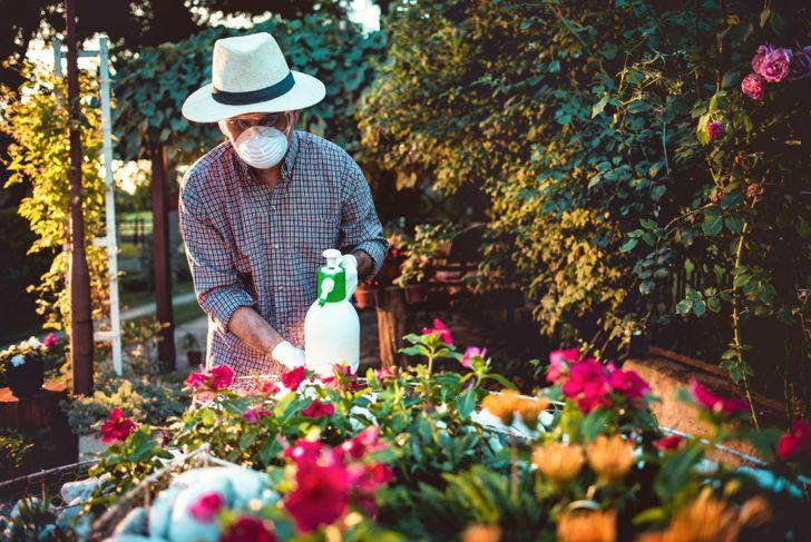 Man spraying flowers in the garden