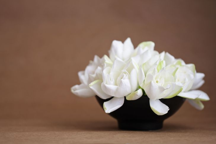 Gardenia flowers in a black vase with brown paper background