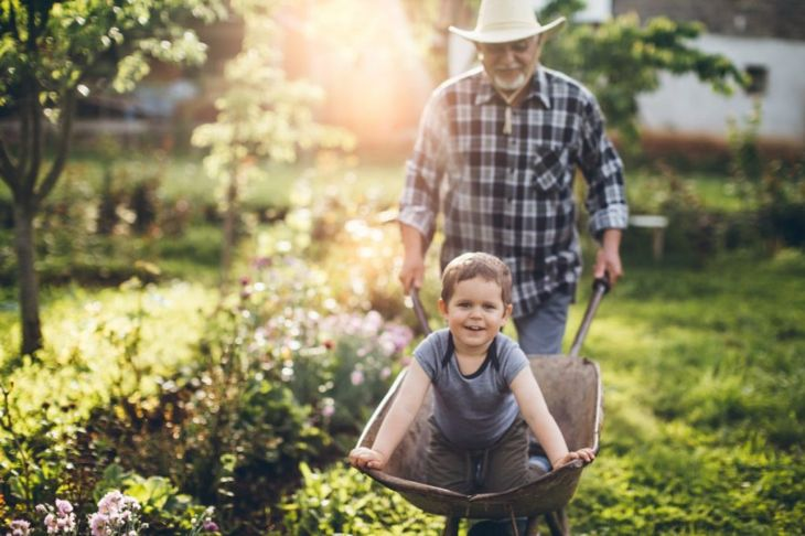 gardening, grandchildren, plants, growing