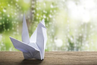 How to Fold an Origami Flapping Crane
