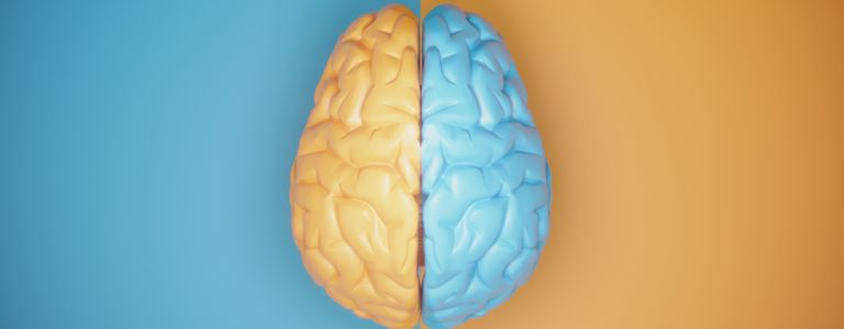 What is Left Brain and Right Brain Thinking?