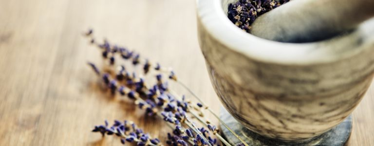 Benefits of Growing Lavender