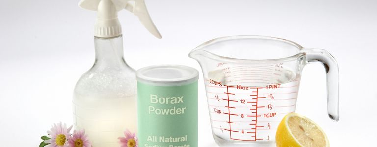 Why Borax Should Always Be in Your Cupboard
