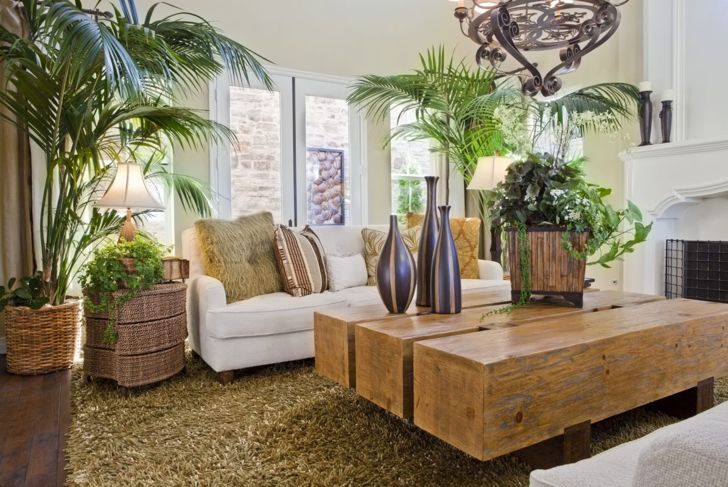 If you have a green thumb, give your living room a tropical vibe with plants.