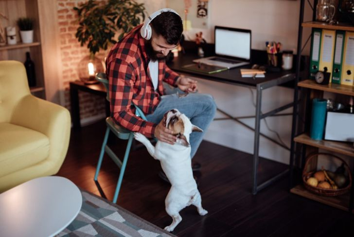 man and dog home office