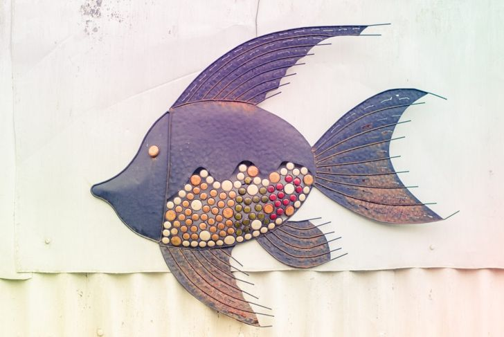 Multicolor metal fish wall art