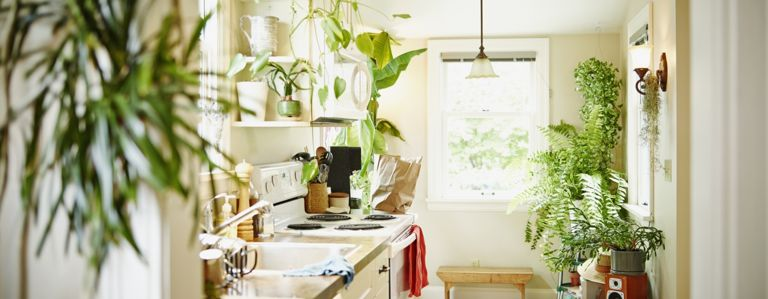 Color Ideas To Make The Kitchen Your Favorite Room In The House