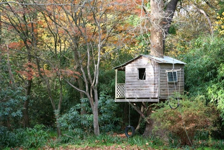 Safety first. Tree houses for young kids don't need to be very high off the ground.