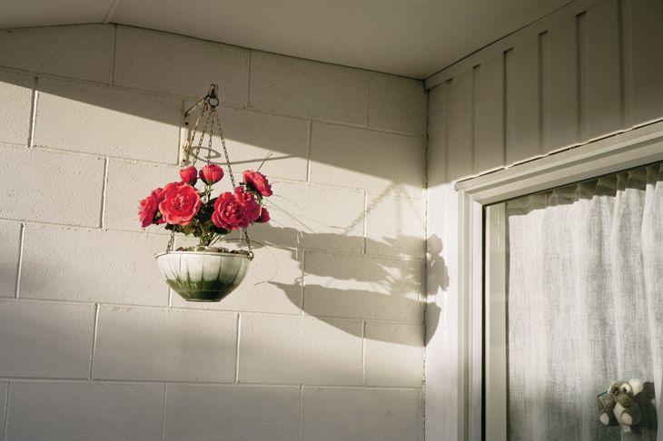 Garden Hanging Baskets Space Saving