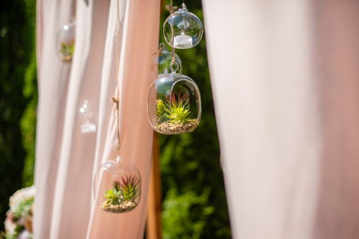 Hang glass orb terrariums