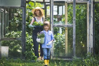 DIY Greenhouse Ideas for Your Garden