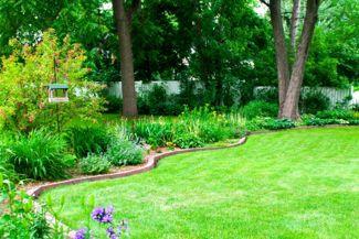 DIY Lawn Edging Ideas for Your Yard
