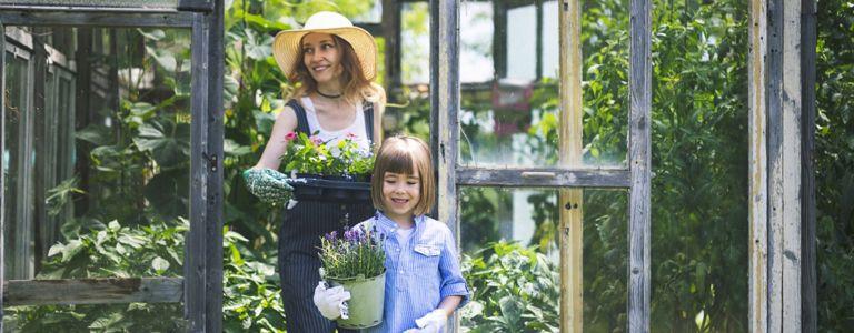 DIY Greenhouse Ideas for Your Garden