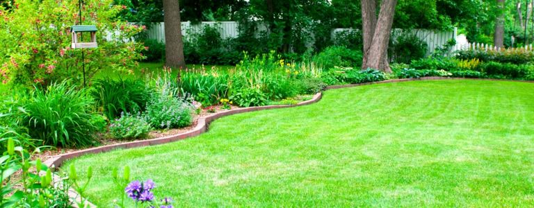 DIY Lawn Edging Ideas for Your Yard