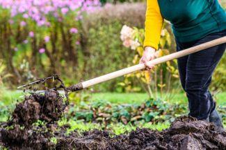 Try Hügelkultur for Your Best Garden Yet