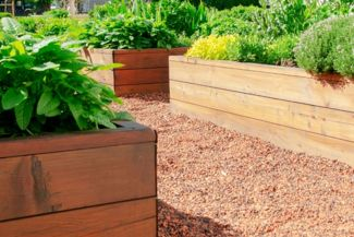 Grow a Backyard Bounty with Raised Garden Beds