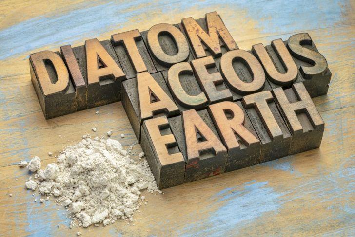 diatomaceous earth dehydration