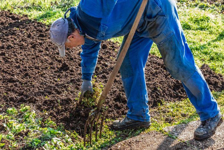 Hügelkultur uses composting material