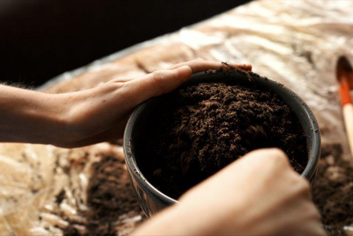 lightweight organic soil