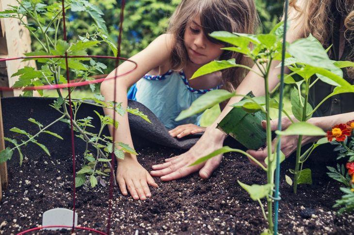 Use gardening to educate