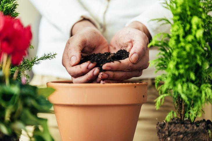 filling pot soil