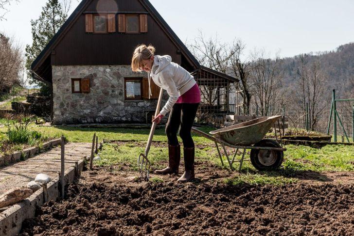 Prepare a lawn for hügelkultur
