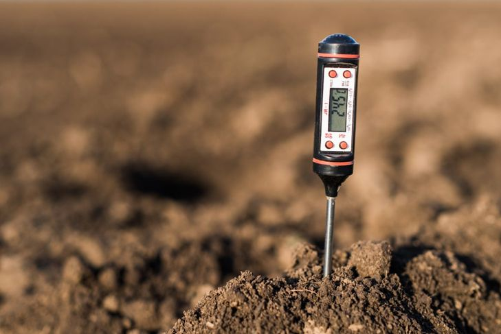 Pile of soil with a digital thermometer stood upright in the center for a reading.