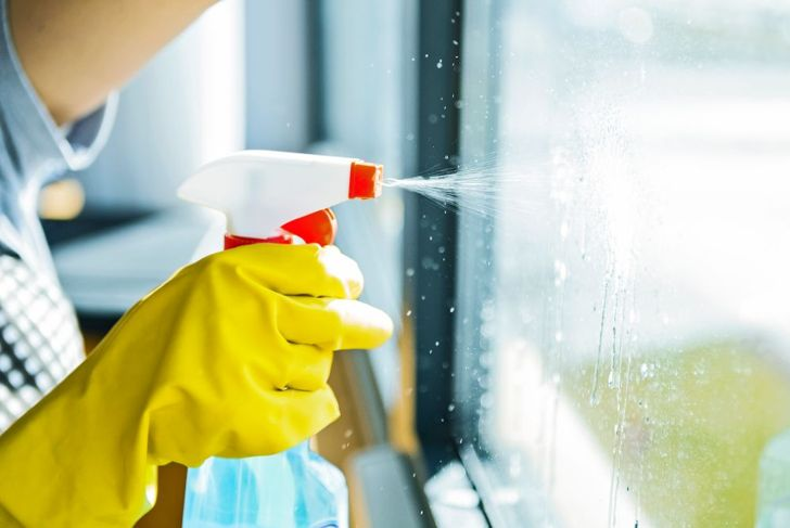 window cleaner and soap for ant infestation