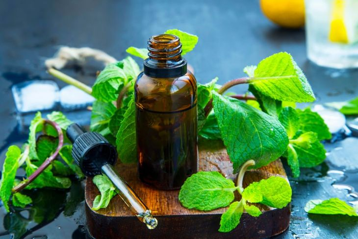 peppermint oil to get rid of ants