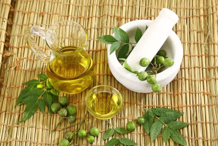 neem oil ant repellant