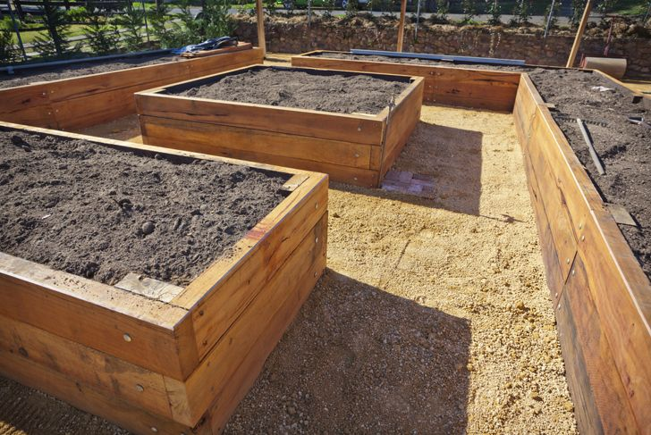 best location for raised bed
