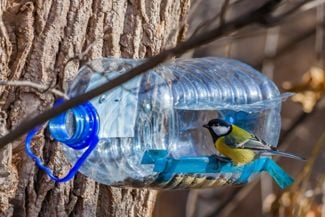 Feed Your Feathered Friends With These DIY Bird Feeders