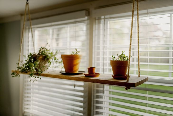Suspend a shelf for plants