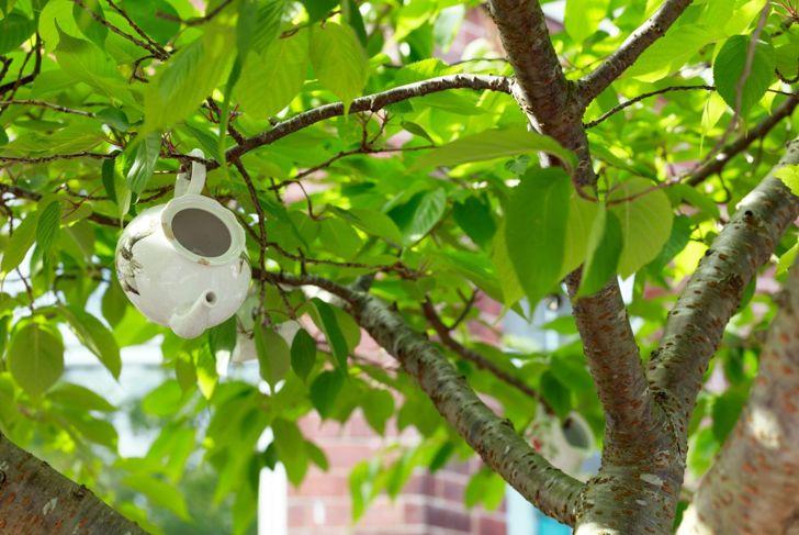 tree teapot cup